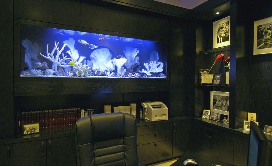 Подсветка аквариума светодиодными лентами своими руками